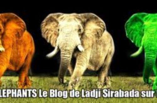 Article : Journée Mondiale du blog : Avis de MondoBlogeurs
