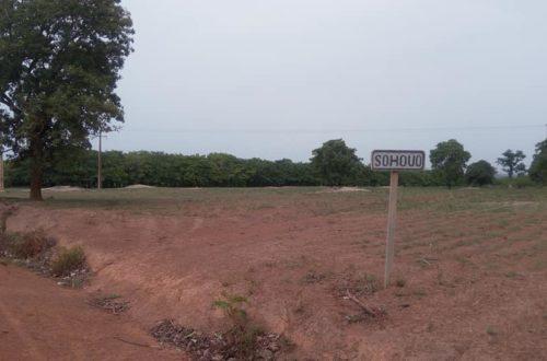 Article : Sohouo, un village moderne dans le Poro
