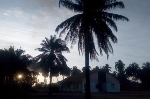 Article : Jacqueville, sous les cocotiers, au bord des plages…